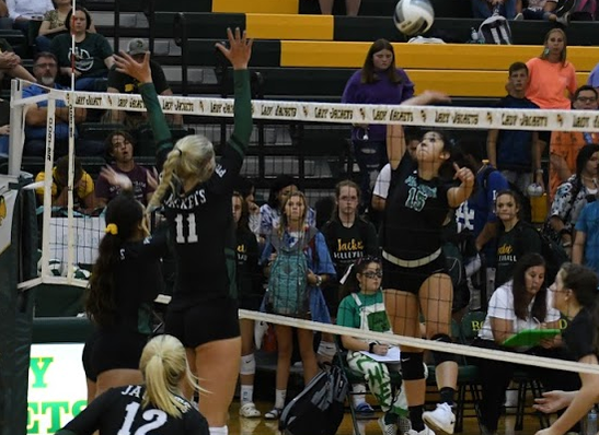 A Panther player prepares her spike.